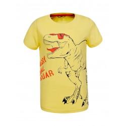 Chlapecké tričko Glo -Story